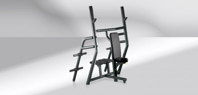 TechnoGym Element+ Line Vertical Bench