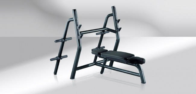 TechnoGym Element+ Line Horizontal Bench