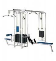 Life Fitness Pro Serie Multi Jungle