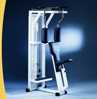 TechnoGym Rowing Torso