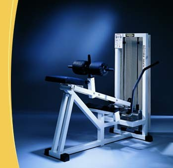 TechnoGym Sitting Calf